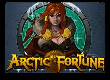 Игровой автомат Arctic Fortune в бесплатном казино онлайн