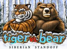 Tiger VS Bear или Тигр Против Медведя