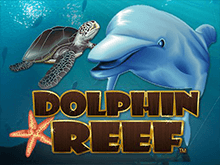 Азартный слот Риф Дельфина — играть в режиме онлайн